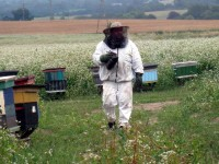 Pszczelarz przy pracy